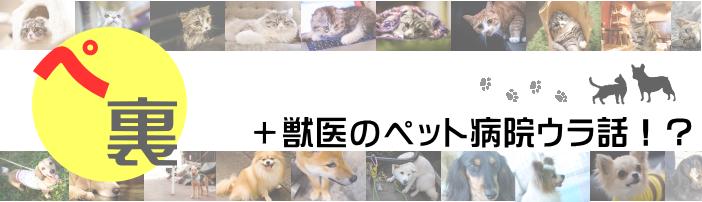 +獣医のペット病院ウラ話!?